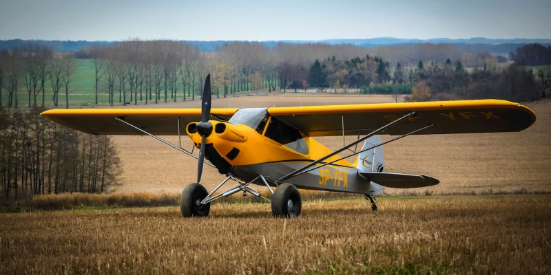 Carbon Cub EX SP-YFX